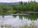 Alaska 2009 - Tag 08