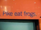 Vancouver_PikeEatFrogs