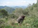 Mallorca 2010-ich krieg das im Vollformat drauf !!