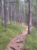 Alternativprogramm Wandern
